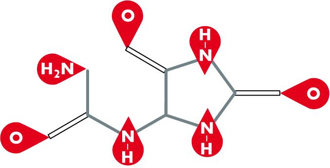 Allantoin - 5-Ureidohydantoin - CAS 97-59-6