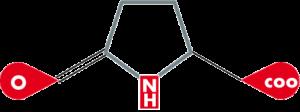 Pyrrolidoncarbonsäure