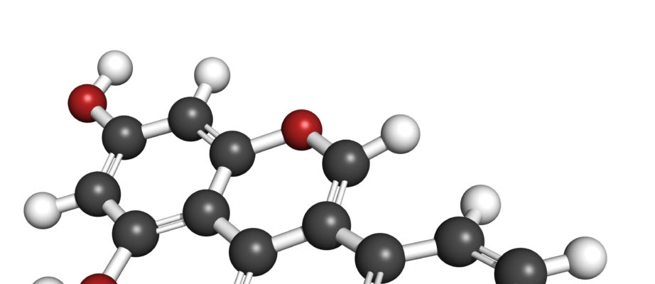 Phytoöstrogene