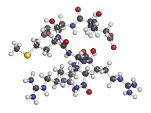 Acetyl Hexapeptide-3 (Argireline)