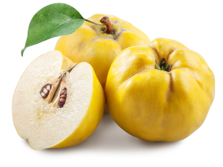 quince extract, Cydonia Oblonga Leaf Extract