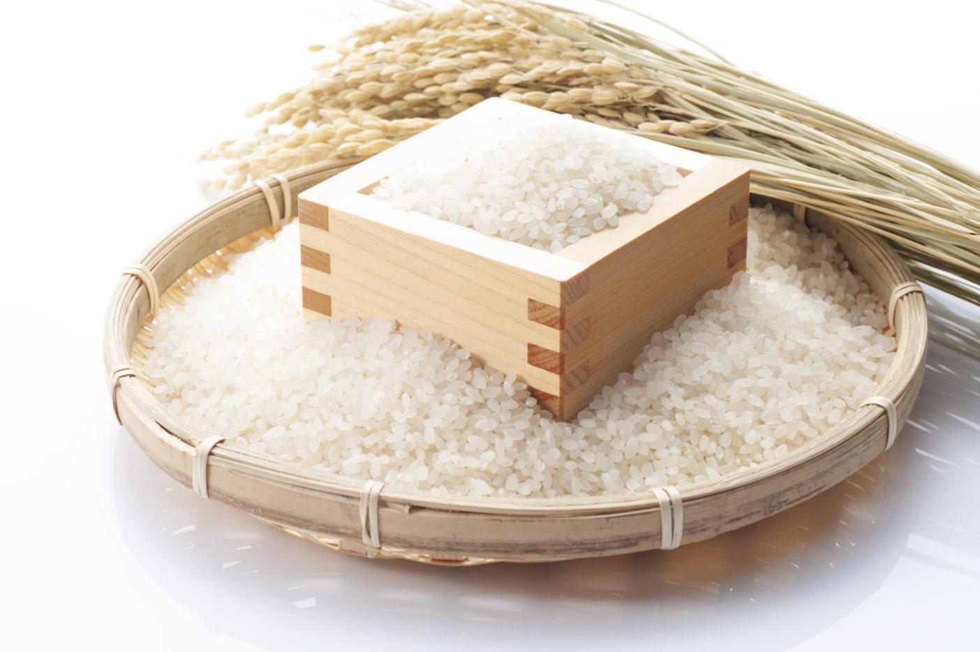 Oryza Sativa (Rice) Starch, Reiswachs, Reisöl