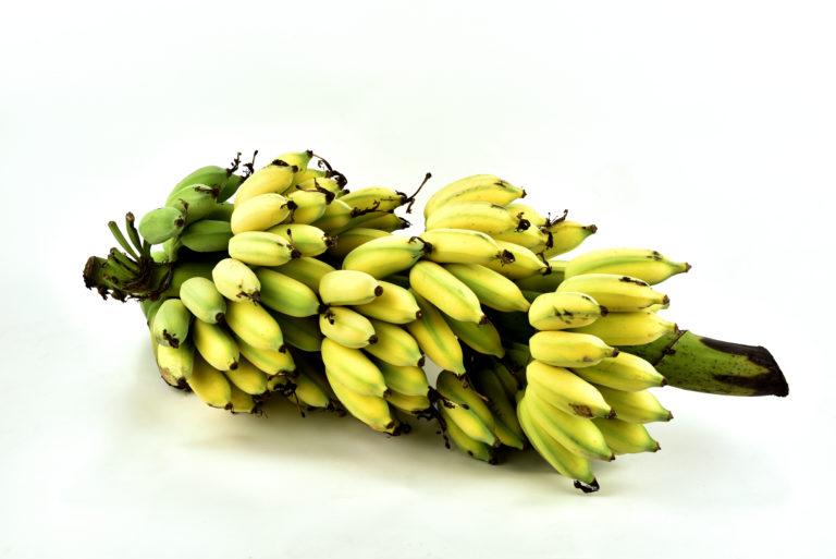 Musa Sapientum (Banana) Pulp Extract