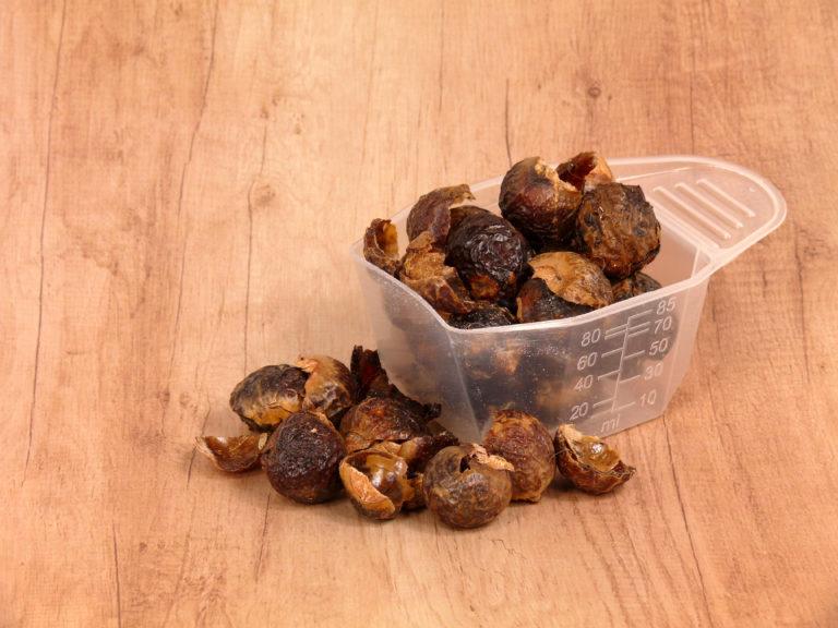 Waschnüsse - Quillaja Saponaria Extract