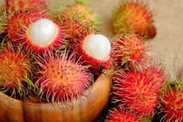 Nephelium Lappaceum; Rambutan, Rambutanextrakt